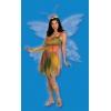 Felicity The Woodland Fairy